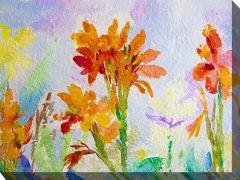 Canna Watercolor