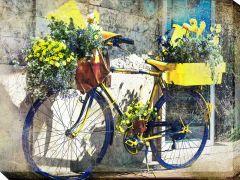 Blue & Yellow Bike