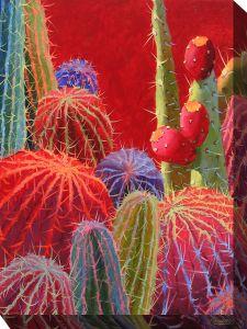 Barrel Cactus #2